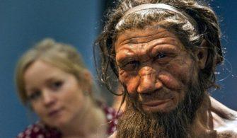 Farklı İnsan Türlerinin İlk Melezlendiği Tarih Ortaya Çıkarıldı